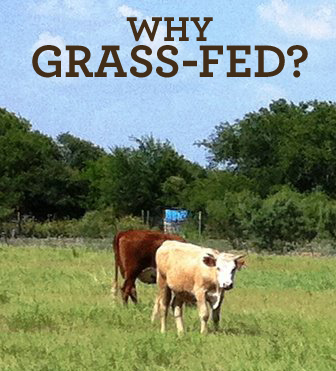 Why_grass_fed?